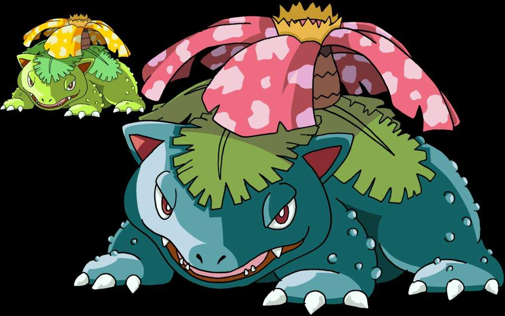 Bulbasaur Evolution Chart Pokemon Ivysaur Evolut...