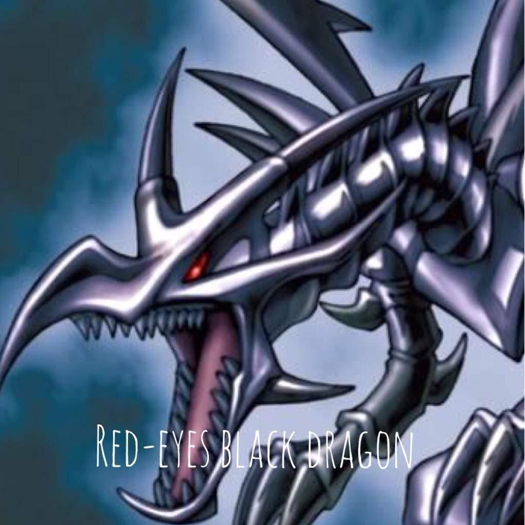 red eyes black dragon anime amino