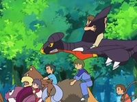 Can garchomp learn fly - answers.com