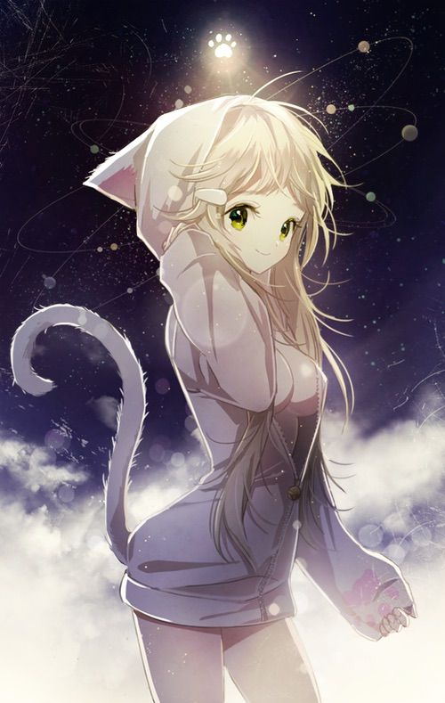 most kawaii cat anime amino