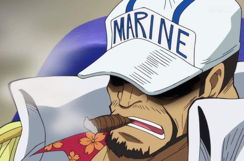 Akainu One Piece Timeskip