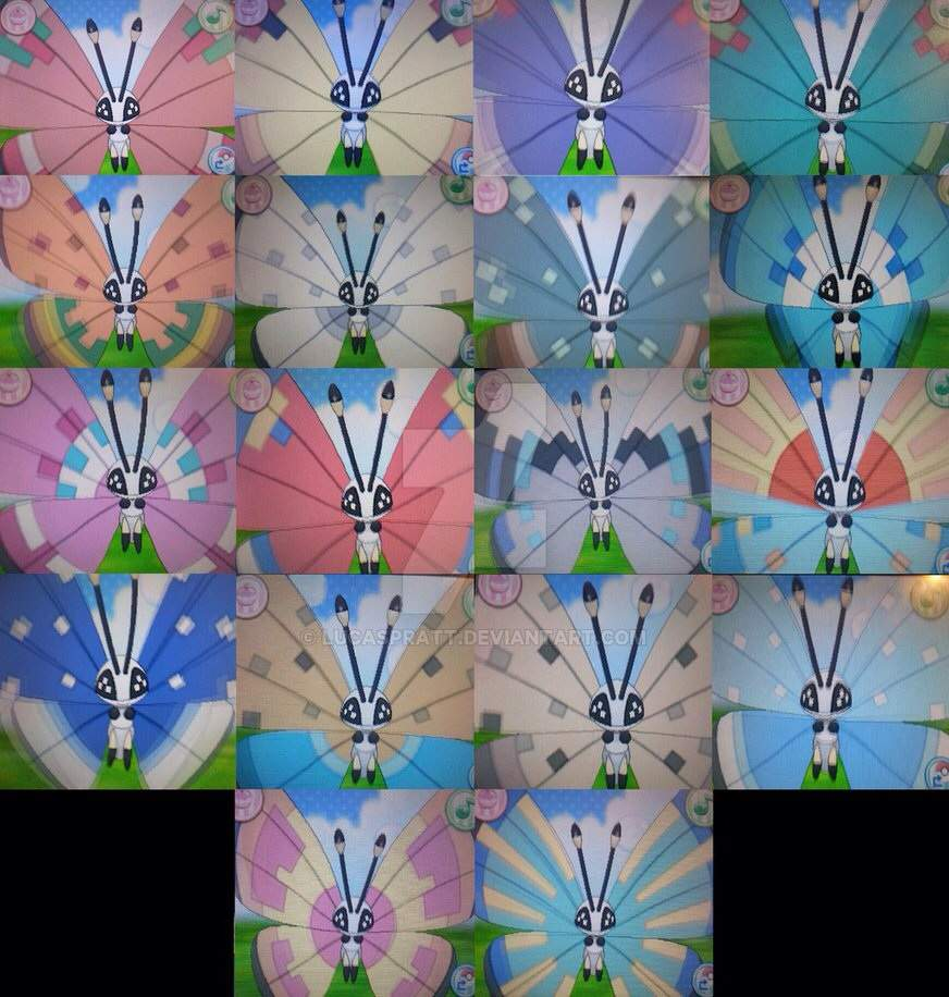 Vivillon monsoon pattern