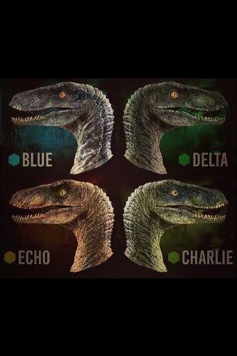 Raptor Squad | Wiki | Virtual Space Amino