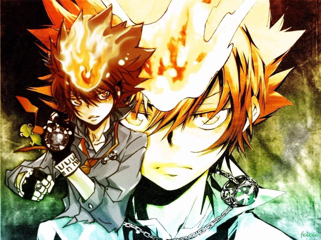 how to watch katekyo hitman reborn just for the story