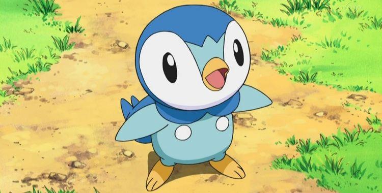 Dawn's Piplup | Pokémon Wiki | FANDOM powered by Wikia