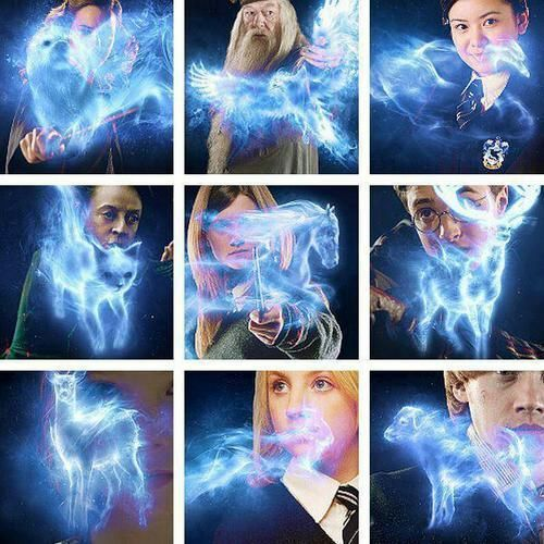 Image result for expecto patronum forms