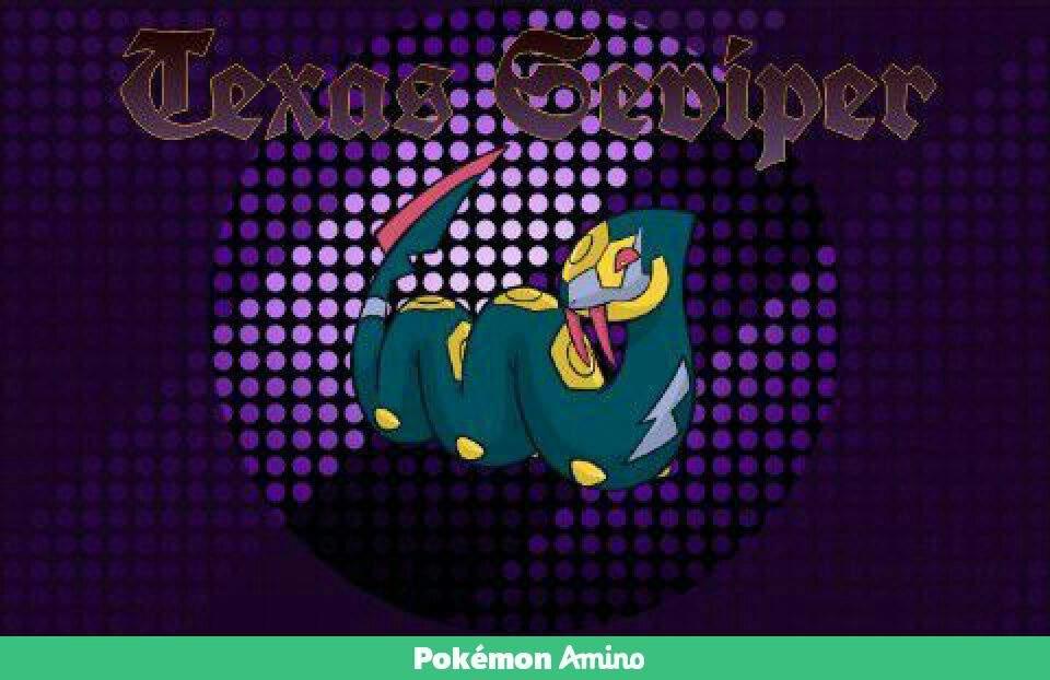 Team Pokemon Banners Virtualization Banners