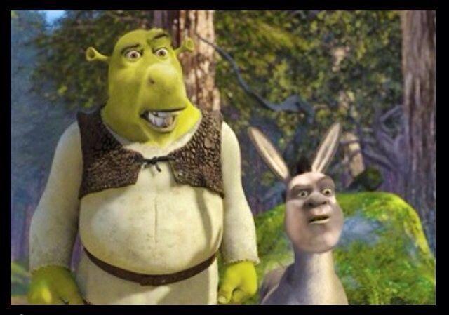 Donkey shrek meme - photo#47