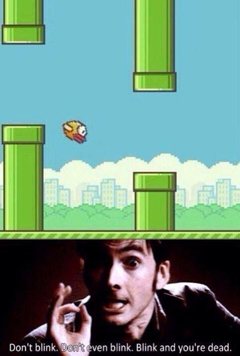 Funny flappy bird memes - photo#15