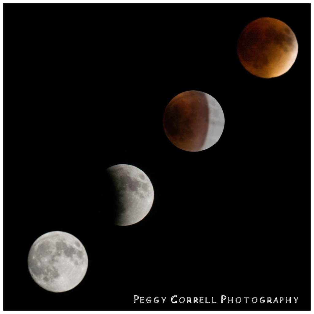 red moon photography - photo #9