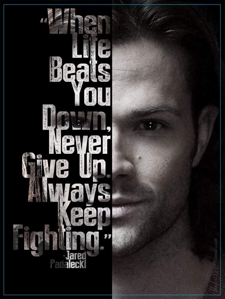 Jared padalecki quotes -  Jared Padalecki