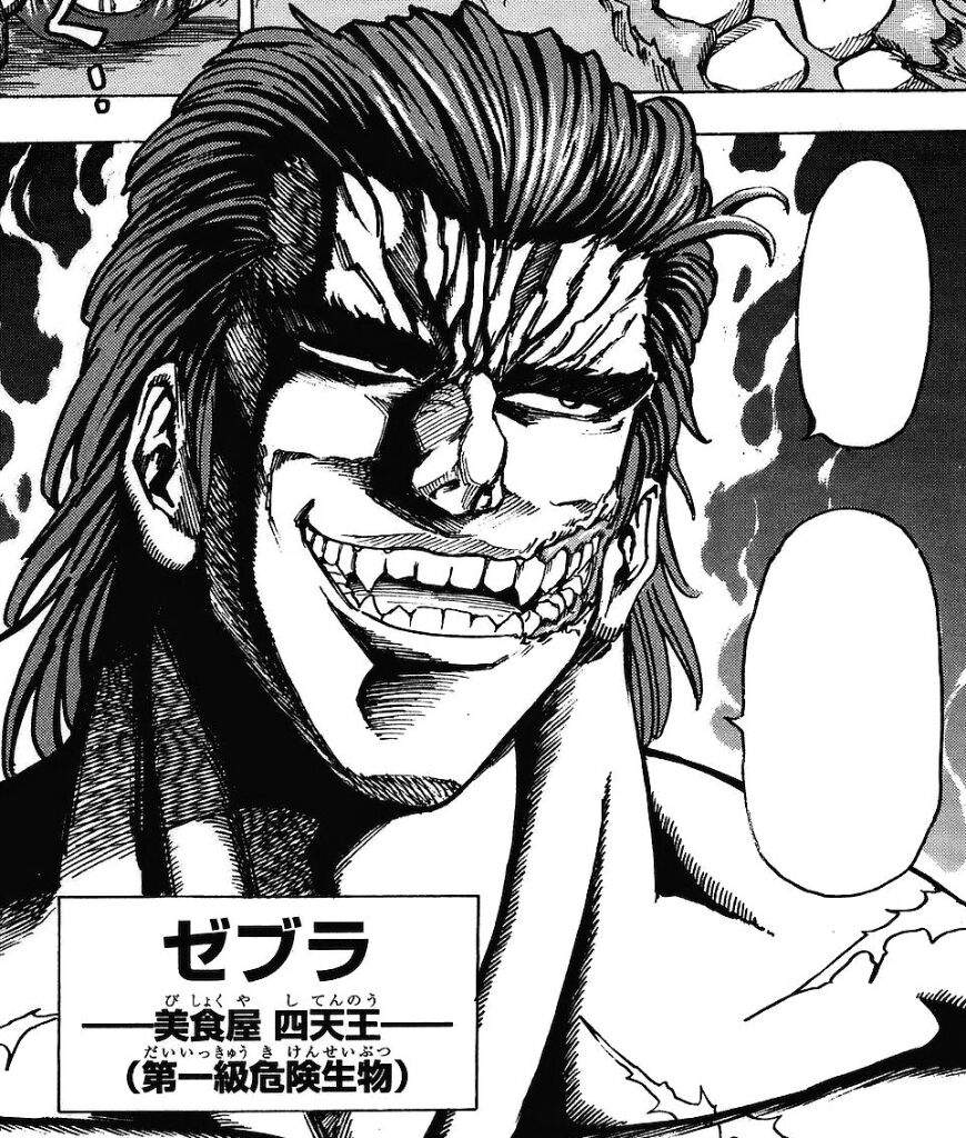 Why You Should READ Toriko