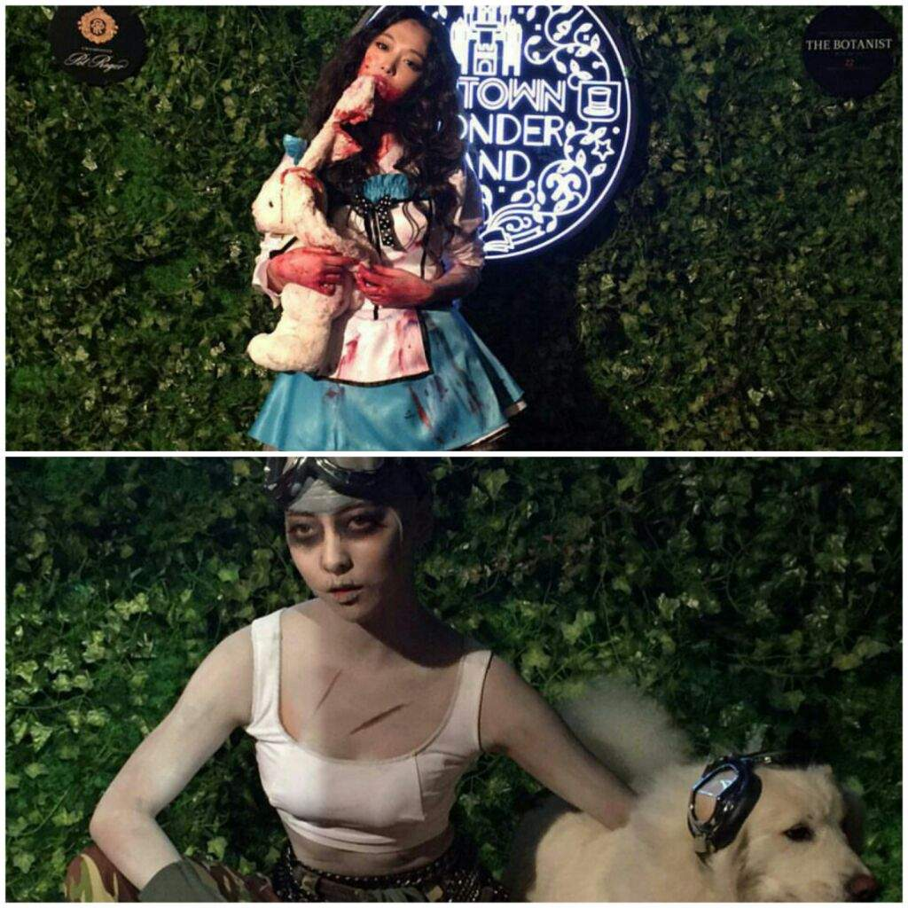 SM HALLOWEEN BASH! | K-Pop Amino