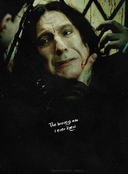 severus snape images hearts - photo #8