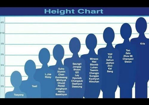 What is your height?👥   K-Pop Amino