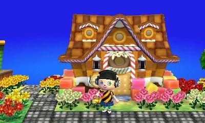 Animal Crossing New Leaf Video Games Amino