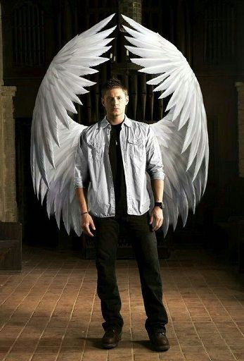 A different kind of angel: A Angel!Dean X Reader imagine