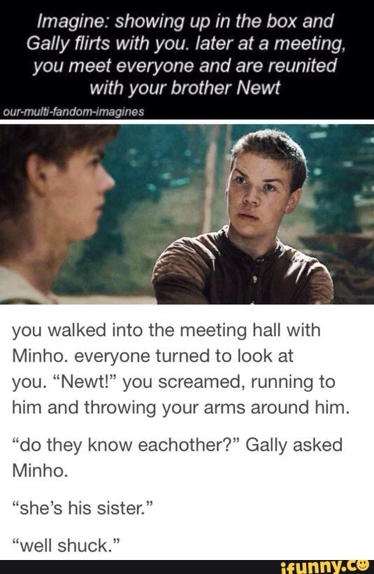 Newt Imagines | Movies...
