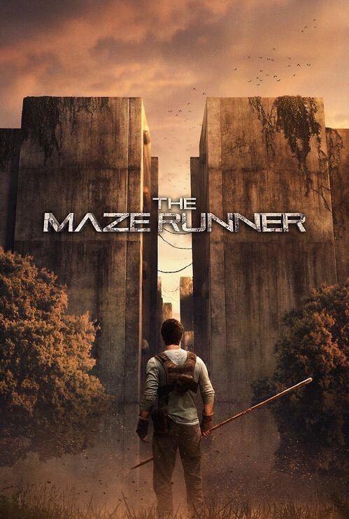 Informative essay about the maze runner