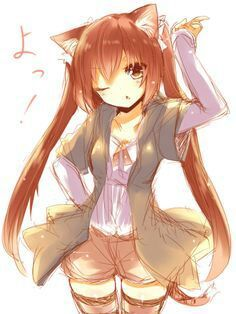 Cute Neko Girls With Brown Hair Wiki Anime Amino