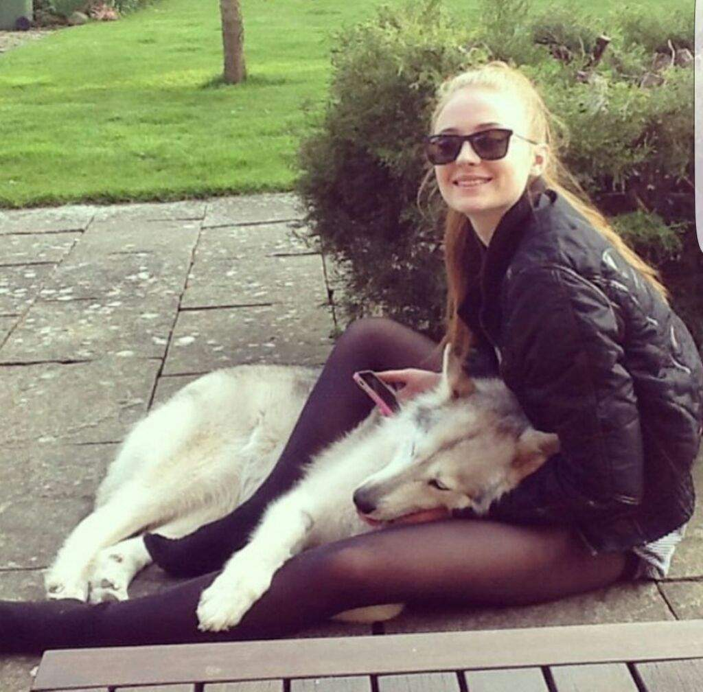 A Lady And Her Dire Wolf: Sophie Turner And Her Dire Wolf