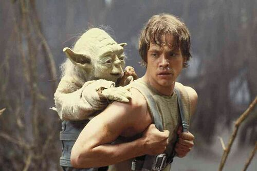 Image result for yoda riding luke's back