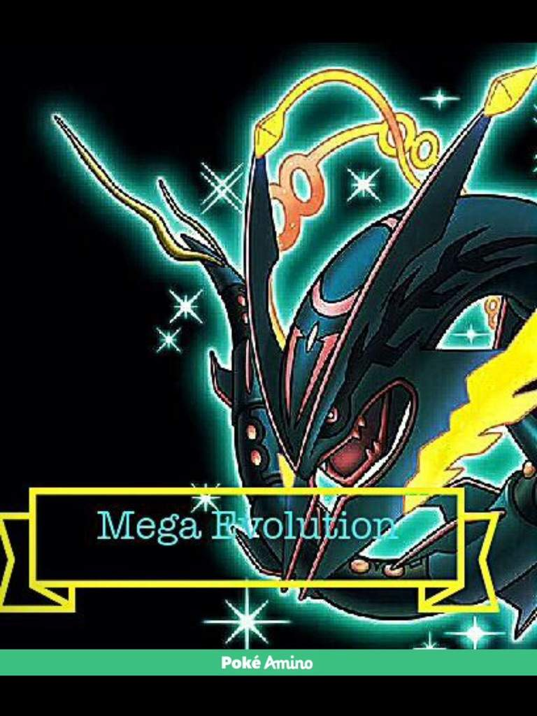 The mega evolution of pok mon pok mon amino - Mega evoltion ...