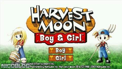 Harvest moon boy and girl marriage
