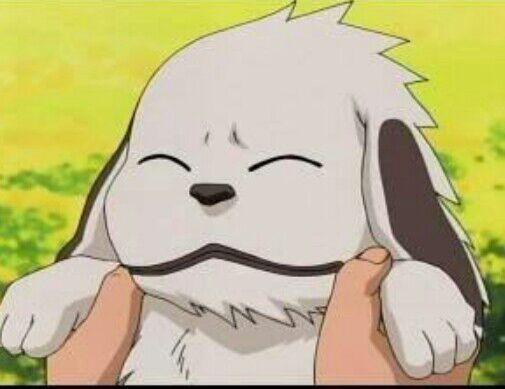 Akamaru | Wiki | •Anime• Amino