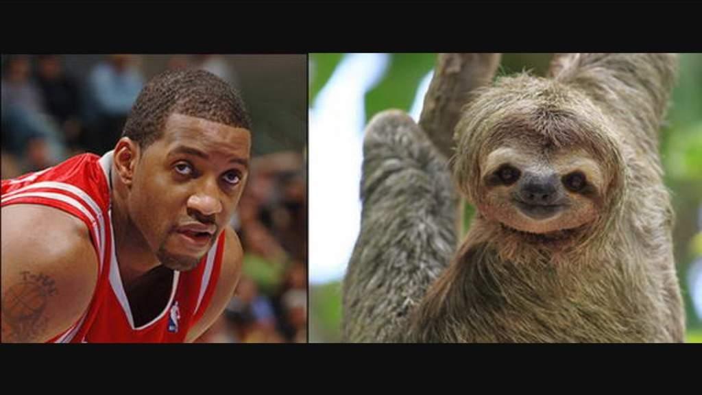 Nba animal look alikes