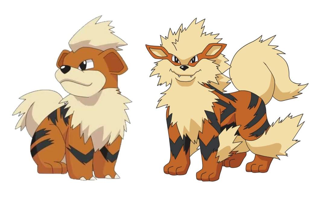 Pokemon Arcanine Evolution
