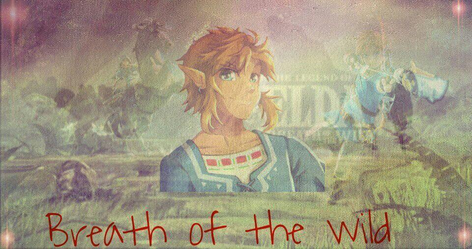 WiiUEdit Entry~ | Zelda Amino