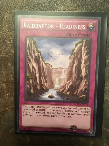 Raidraptor Readiness X3