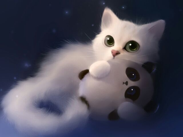 Cute Cat Of The Day