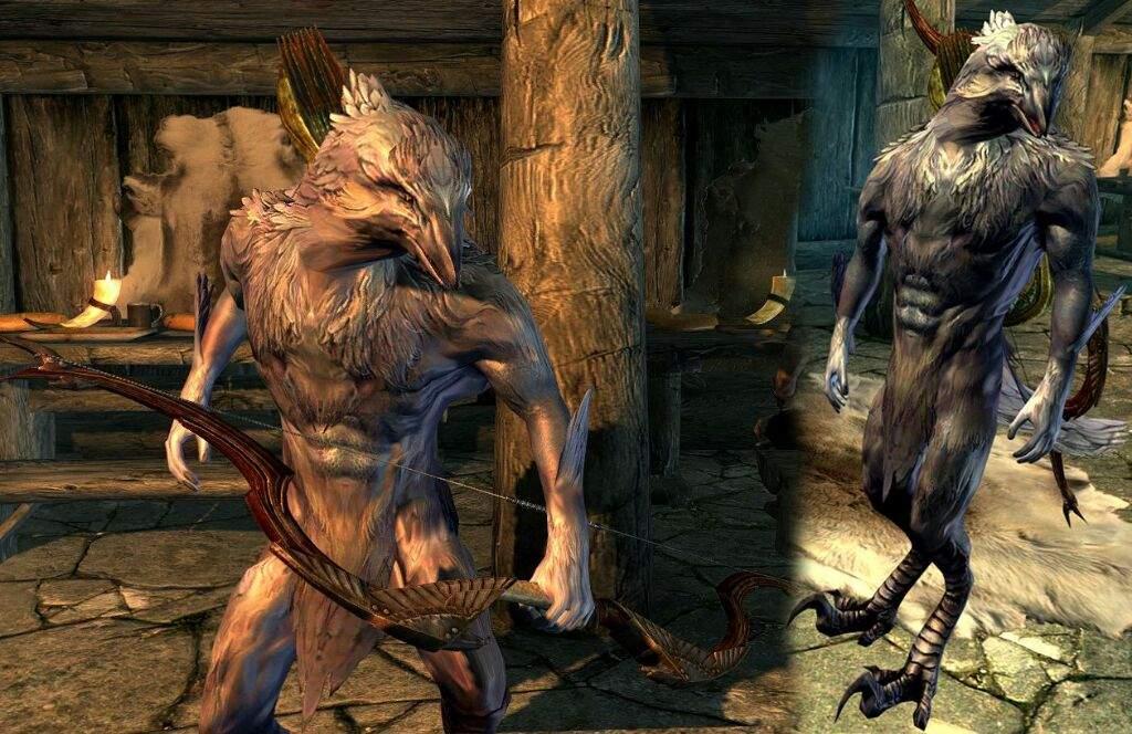 The Lore of the were-creatures | Tamriel: Elder Scrolls ... Werevulture Skyrim