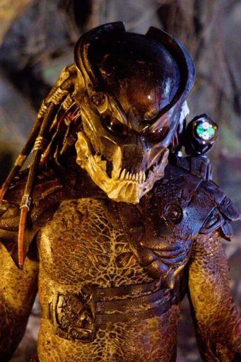 Berserker (Mr  Black) | Wiki | Alien Versus Predator Universe