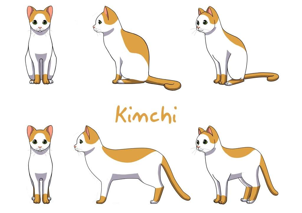 Kimchi The Cat Game