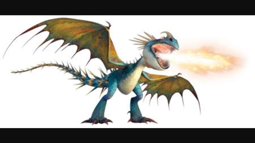 Wyvern Dragon: Dragons Amino