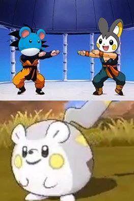 The Pikachu Of Alola Region Pokémon Amino