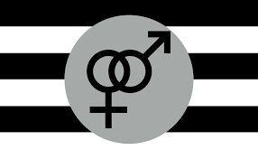 Heterosexual pride sticker