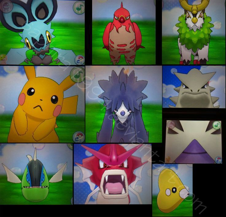 how to catch shiny pokemon in x and y