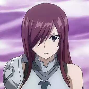 Fairy Tail Mira And Erza