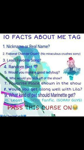 10 Facts About Me Tag   Miraculous Amino