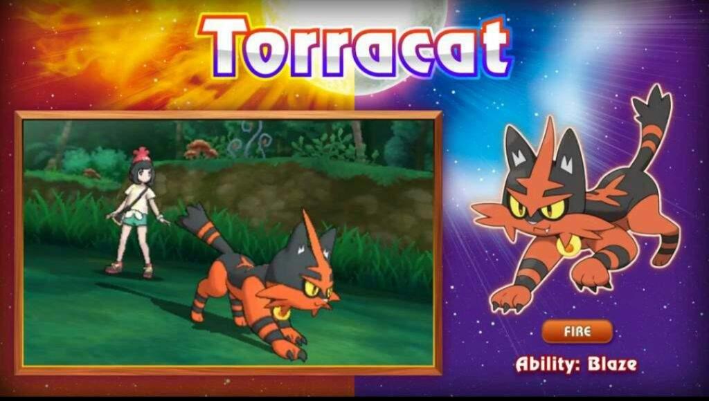 pokemon pc game torrent