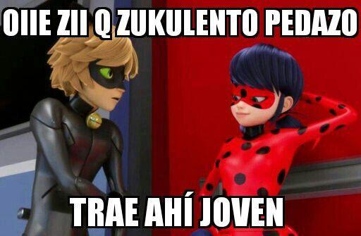 Lady Piropos Sucios Xd Miraculous Ladybug Español Amino