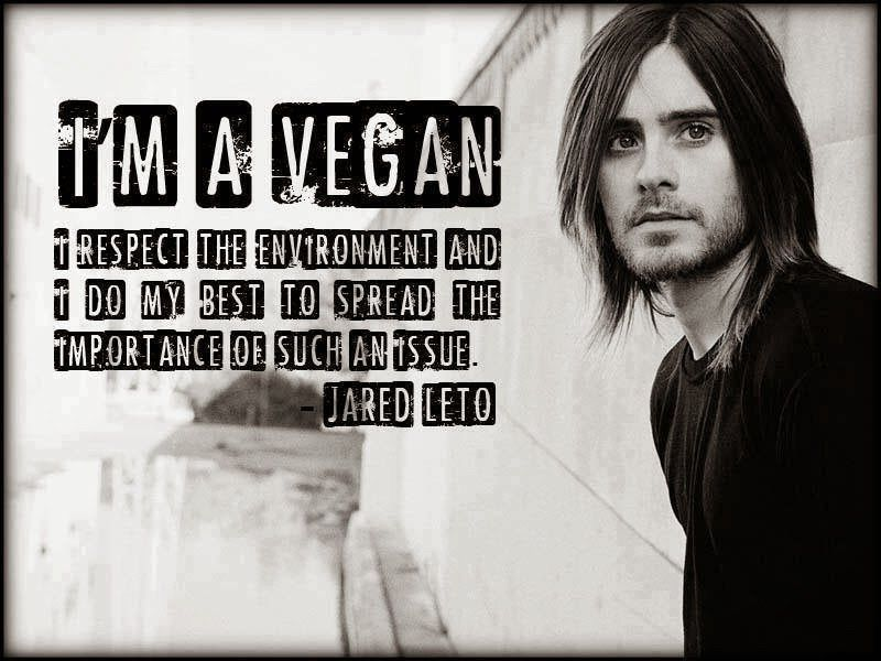 Vegan Quotes Vegan Amino