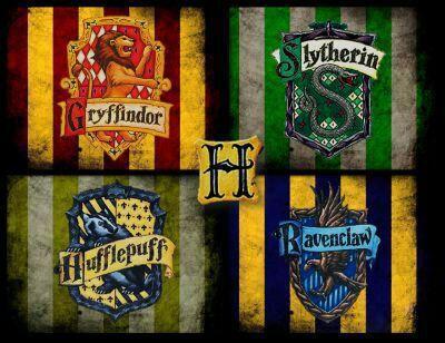 Según La Página Oficial Pottermore A Que Casa Pertenecen Harry