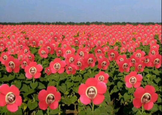 J Hope Flower