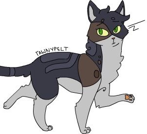 Tawnypelt is just now realizing how floof Feathertail is while her brother  judges her - Art