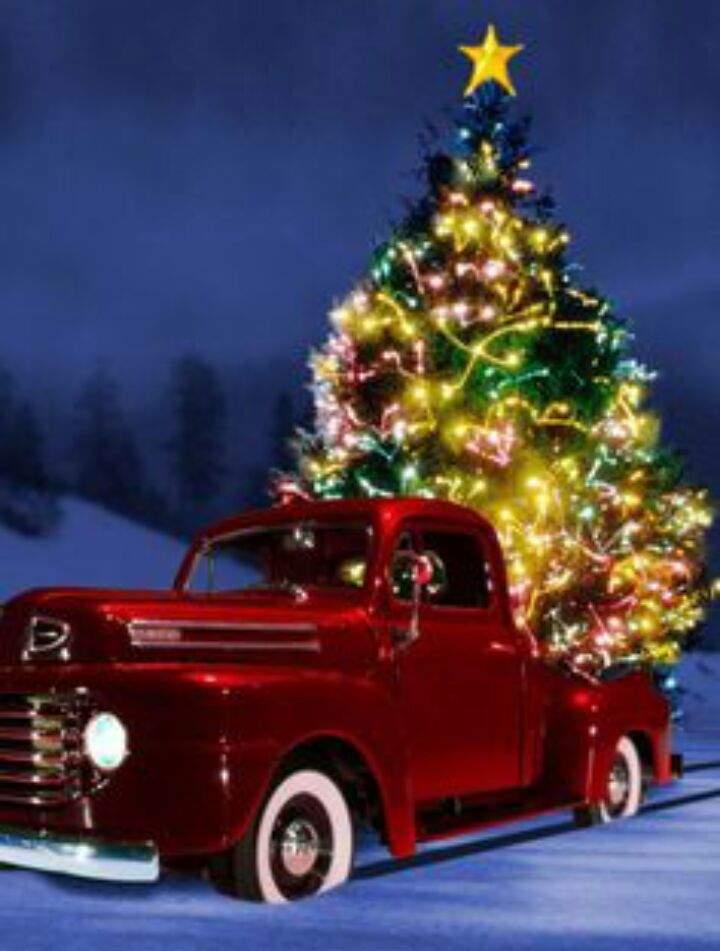 Christmas Tradition Garage Amino